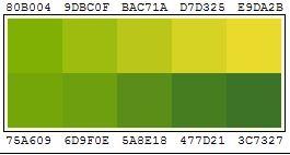 Farbpallette Design Frühling